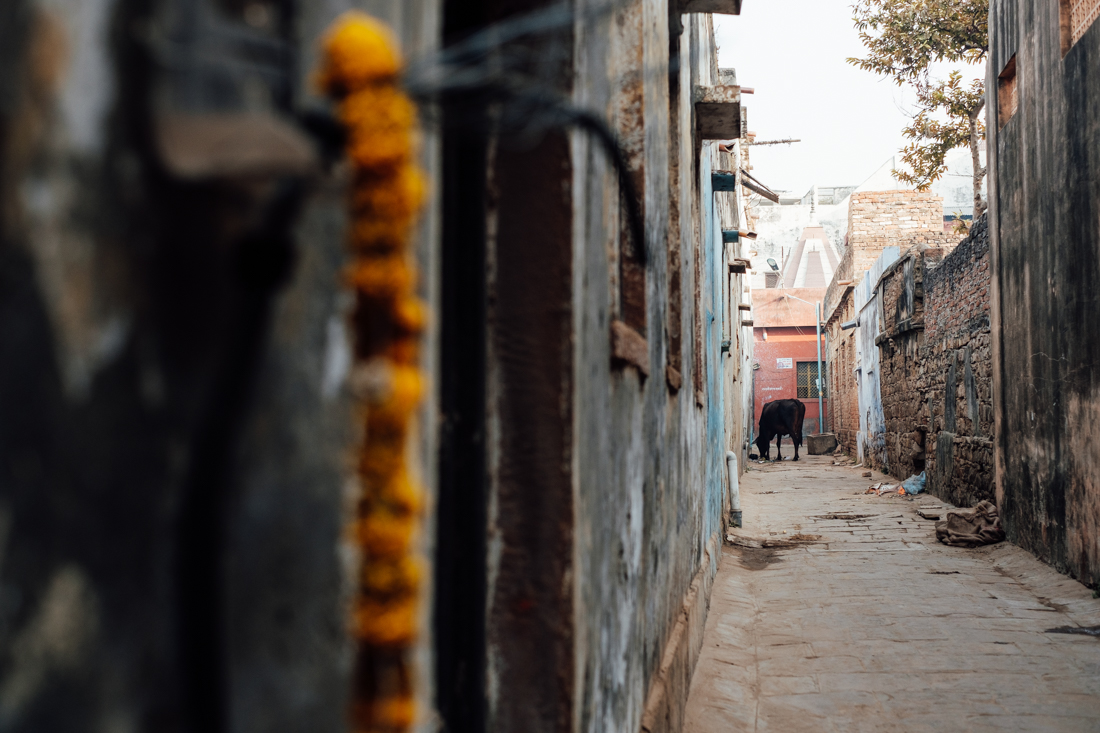 India street photography 150
