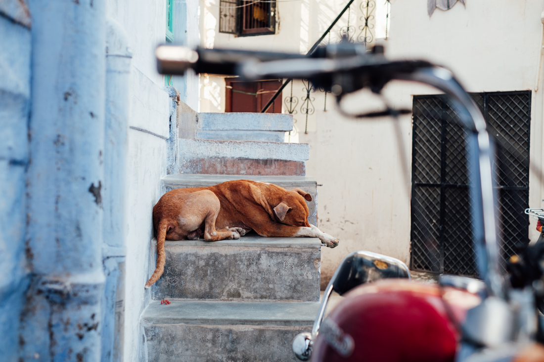 India street photography-35